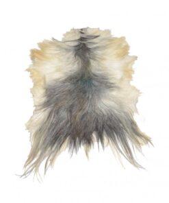 Langhaar-Ziegen-grauweiss
