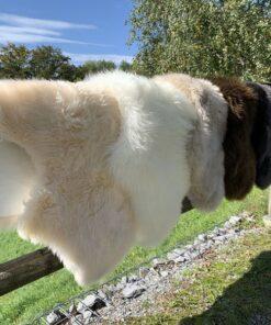 Lammfelle Neuseeland